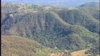 Tamborine Gorge