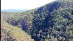 Cedar Creek Gorge